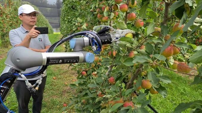 Nghiên cứu, chế tạo thành công robot thu hái hoa quả