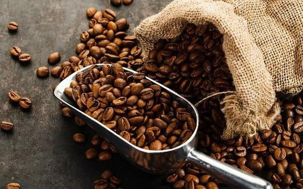 Giá cà phê hôm nay 22/9: Cao nhất ở mức 40.900 đồng/kg