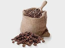 Giá cà phê hôm nay 25/9: Giảm nhẹ 100 - 200 đồng/kg